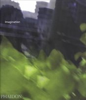 Imagination Monograph : Ideas and Evolution - Bayley, Stephen