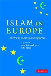 Islam in Europe : Diversity, Identity and Influence - Al-Azmeh, Aziz
