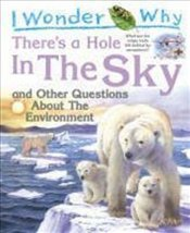 I Wonder Why Theres a Hole in the Sky : and Other Questions About the Environment - Callery, Sean