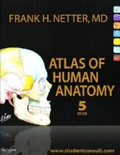 Atlas of Human Anatomy 5e : With Student Consult Access - Netter, Frank H.