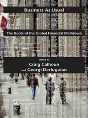 Business as Usual : The Roots of the Global Financial Meltdown - Calhoun, Craig