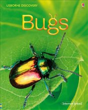 Bugs (Usborne Discovery) - Dickens, Rosie