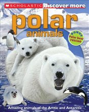 Scholastic Discover More : Polar Animals - Arlon, Penelope