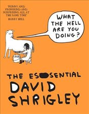 What the Hell are You Doing : The Essential David Shrigley - Shrigley, David
