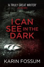 I Can See in the Dark - Fossum, Karin