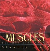 Muscles : Our Muscular System - Simon, Seymour