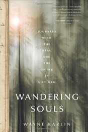 Wandering Souls : Journeys with the Dead and the Living in Viet Nam - Karlin, Wayne