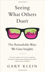 Seeing What Others Dont : The Remarkable Ways We Gain Insights  - Klein, Gary