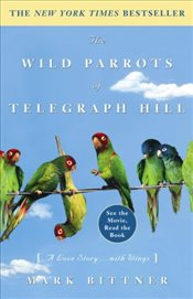 Wild Parrots of Telegraph Hill : A Love Story . . . with Wings - Bittner, Mark