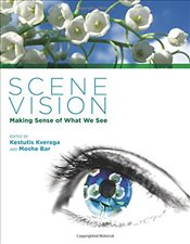 Scene Vision : Making Sense of What We See - Bar, Moshe