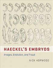 Haeckels Embryos : Images, Evolution, and Fraud - Hopwood, Nick