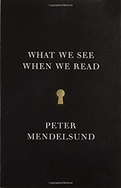 What We See When We Read - Mendelsund, Peter