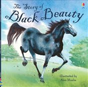 Story of Black Beauty (Picture Books) - Davidson, Susanna