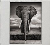 Nick Brandt : On This Earth, A Shadow Falls - Brandt, Nick