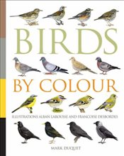 Birds by Colour - Duquet, Marc