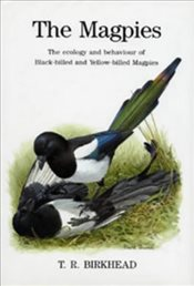 Magpies : The Ecology and Behaviour of Black-billed and Yellow-billed Magpies   - Birkhead, Tim R.