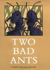 Two Bad Ants - Allsburg, Chris Van
