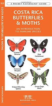 Costa Rica Butterflies and Moths : A Folding Pocket Guide to Familiar Species  - Kavanagh, James