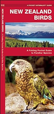 New Zealand Birds : A Folding Pocket Guide to Familiar Species - Kavanagh, James