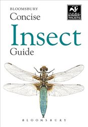 Concise Insect Guide (Concise Guides) - Bloomsbury Group