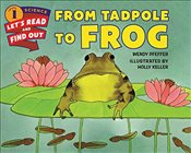 From Tadpole to Frog (Lets-Read-and-Find-Out Science 1) - Pfeffer, Wendy