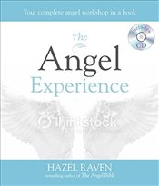 Angel Experience: Your complete angel workshop in a book - Raven, Hazel