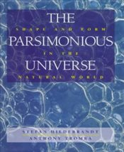Parsimonious Universe : Shape and Form in the Natural World - Hildebrandt, Stefan