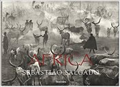 Africa : Eye on Africa : Thirty Years of Africa Images, Selected by Salgado Himself - Salgado, Sebastiao