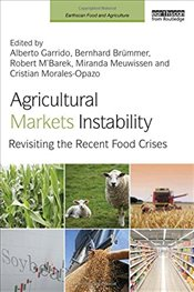 Agricultural Markets Instability: Revisiting the Recent Food Crises  - Garrido, Alberto