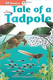 Tale of a Tadpole : DK Readers Level 1 - Wallace, Karen