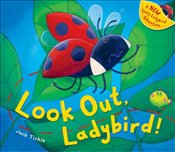 Look Out, Ladybird! - Tickle, Jack