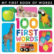 My First Book of Words: 100 First Words - Little Tiger Press