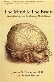 Mind and the Brain : Neuroplasticity and the Power of Mental Force - Schwartz, Jeffrey M.