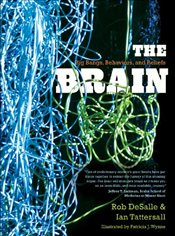 Brain : Big Bangs, Behaviors, and Beliefs - Desalle, Rob