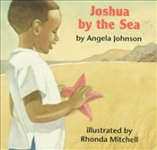 Joshua by the Sea - Johnson, Angela