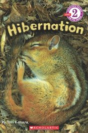 Scholastic Reader Level 2: Hibernation - Kosara, Tori
