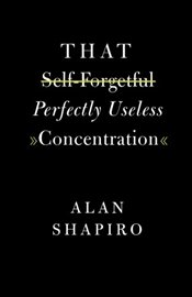 That Self-Forgetful Perfectly Useless Concentration - Shapiro, Alan