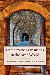 Democratic Transitions in the Arab World -