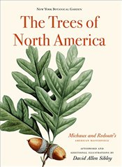 Trees of North America : Michaux and Redoutes American Masterpiece -