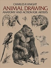 Animal Drawing (Dover Anatomy for Artists) - Knight, Charles R.