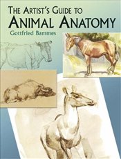Artists Guide to Animal Anatomy (Dover Anatomy for Artists) - Bammes, Gottfried