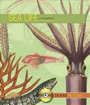Sea Life (Dover Pictura Electronic Clip Art) - Inc, Dover Publications