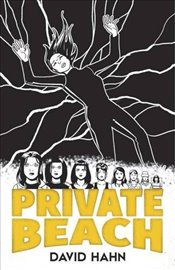 Private Beach (Dover Graphic Novels) - Hahn, David