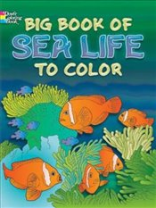 Big Book of Sea Life to Color (Dover Nature Coloring Book) - Soffer, Ruth