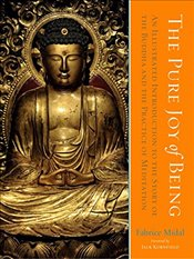 Pure Joy of Being: An Illustrated Introduction to the Story of the Buddha and the Practice of Medita - Midal, Fabrice