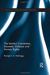 Istanbul Convention, Domestic Violence and Human Rights (Routledge Research in Human Rights Law) -