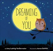 Dreaming of You - Vanderwater, Amy