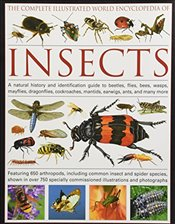 Complete Illustrated World Encyclopedia of Insects: A Natural History and Identification Guide to Be - Walters, Martin