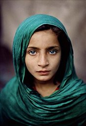 Steve McCurry : A Life in Pictures : 40 Years of Photography - McCurry, Steve