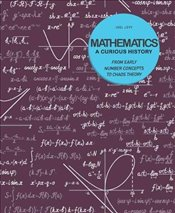 Mathematics : A Curious History - Levy, Joel